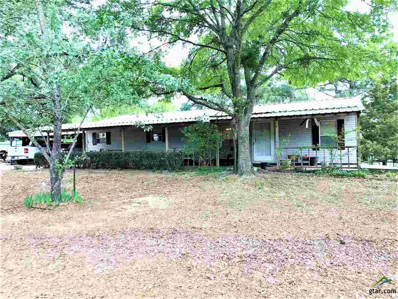 7225 Cr 1200, Mt Pleasant, TX 75455 - #: 10093151