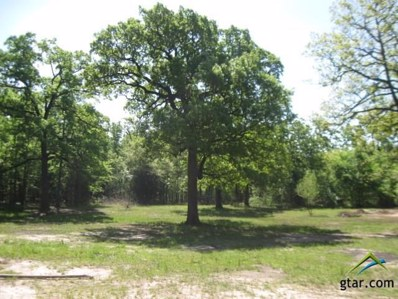 1299 Vz County Road 1918, Fruitvale, TX 75127 - #: 10093353
