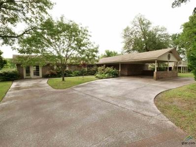 233 Fairlawn Dr, Hideaway, TX 75771 - #: 10093889