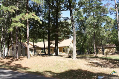 111 King James, Scroggins, TX 75480 - #: 10094091