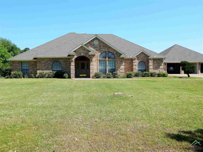 1711 Hagan Road, Whitehouse, TX 75791 - #: 10094238