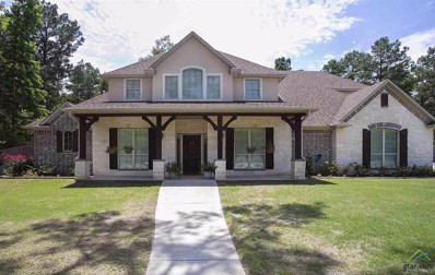 12035 Jazmin Circle, Flint, TX 75762 - #: 10094907