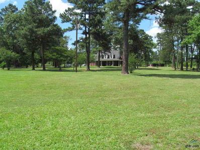 584 Cr 4840, Winnsboro, TX 75494 - #: 10094954