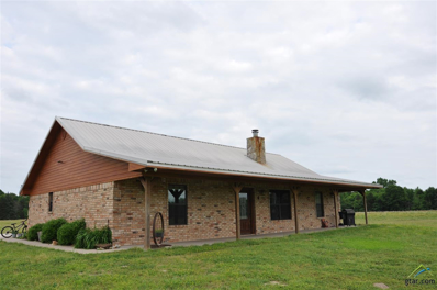 570 County Road 4186, Quitman, TX 75783 - #: 10095291