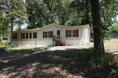 116 Sandy Lake Road, Scroggins, TX 75480 - #: 10095425