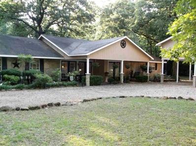 119 Timberidge Trail, Holly Lake Ranch, TX 75765 - #: 10095533
