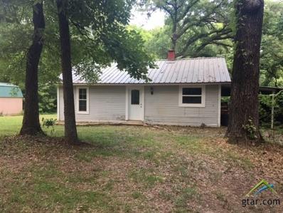 20489 W Grove Club Lake Rd, Whitehouse, TX 75791 - #: 10095564