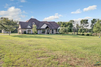 11783 County Road 140, Flint, TX 75762 - #: 10095872