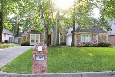 3803 Long Leaf, Tyler, TX 75707 - #: 10095932