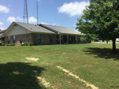 217 Cr 4134, Quitman, TX 75783 - #: 10095950