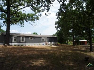969 County Road 2231, Mineola, TX 75773 - #: 10095958