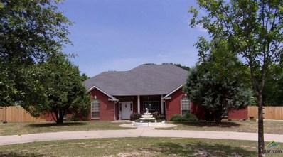 49 Cr 3246, Mt Pleasant, TX 75455 - #: 10095964