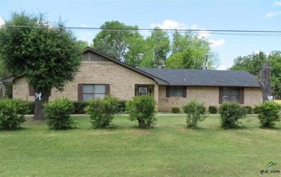 133 N Sycamore St, Alto, TX 75925 - #: 10095972