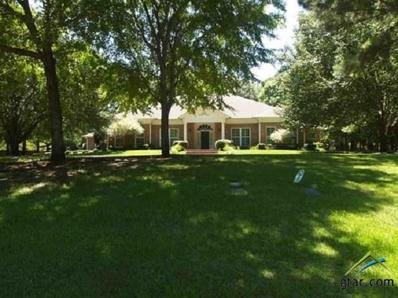 21 Tallwood, Longview, TX 75605 - #: 10096043