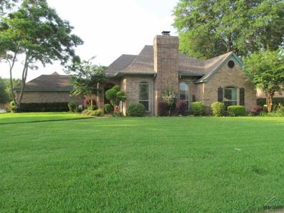 101 Jan Drive, Winnsboro, TX 75494 - #: 10096119