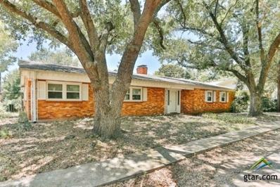 201 W Gilmer Street, Big Sandy, TX 75755 - #: 10096141