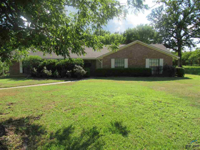 5834 S State Highway 37, Mineola, TX 75773 - #: 10096200