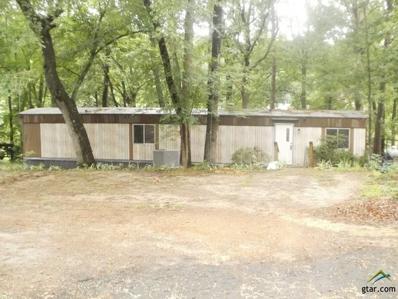 101 South Park Rd., Scroggins, TX 75480 - #: 10096235