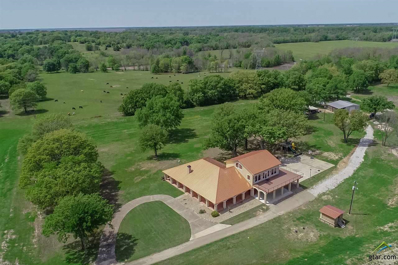 2760 NW County Road 1080, Sulphur Bluff, TX 75481 - #: 10096435