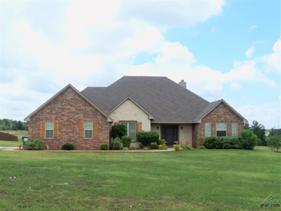 280 Clements Circle, Tatum, TX 75691 - #: 10096563