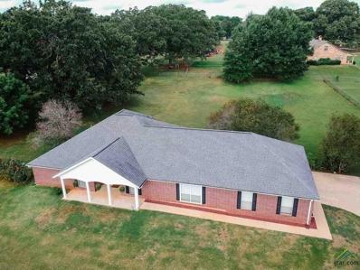 18676 Scott Drive, Whitehouse, TX 75791 - #: 10096815