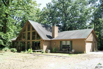 287 W Holly Trail, Holly Lake Ranch, TX 75765 - #: 10096894