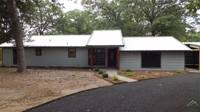 306 County Road 3163, Quitman, TX 75783 - #: 10097468