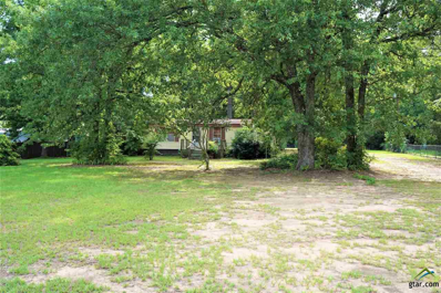19476 Cr 2176, Whitehouse, TX 75791 - #: 10097534