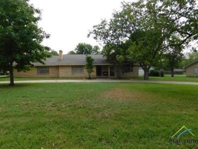 109 Princedale, Pittsburg, TX 75686 - #: 10097572