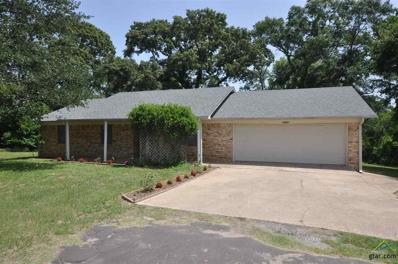 12387 Welch Drive, Tyler, TX 75709 - #: 10097597