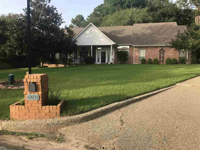 18244 E Springmill Court, Flint, TX 75762 - #: 10097617