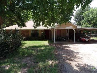23151 Edgewater Dr, Frankston, TX 75763 - #: 10097625