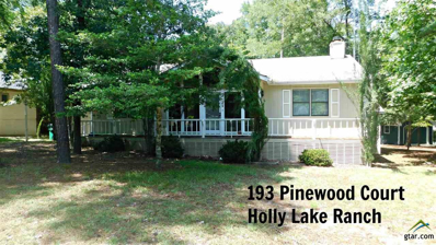 193 Pinewood Court, Holly Lake Ranch, TX 75765 - #: 10097673