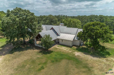 450 Rs County Road 3419, Emory, TX 75440 - #: 10097887