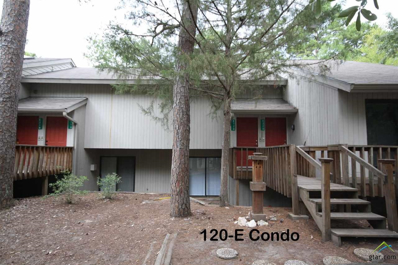 120-E Holly Hill Circle, Holly Lake Ranch, TX 75765 - #: 10097945