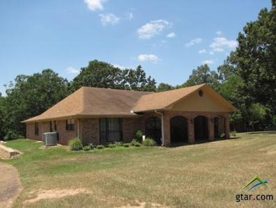 17220 S Fm 225, Laneville, TX 75667 - #: 10097949