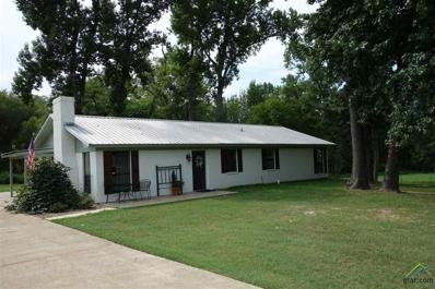 1116 Cr 4440, Winnsboro, TX 75494 - #: 10098120