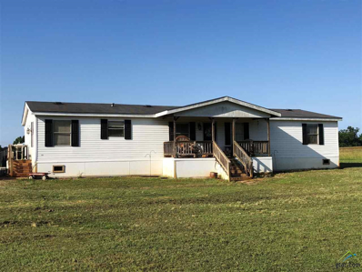 3980 Fm 235, Jacksonville, TX 75766 - #: 10098203