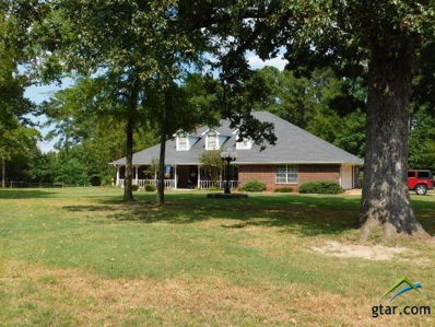 348 Cr 1311, Pittsburg, TX 75686 - #: 10098221