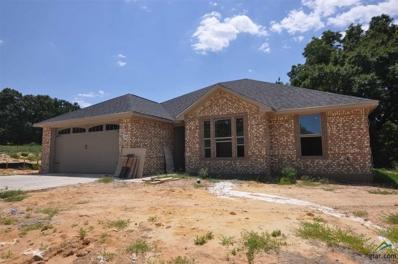 14664 Gracie Ln, Brownsboro, TX 75756 - #: 10098274