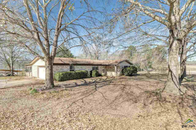 15684 Mcelroy Rd, Whitehouse, TX 75791 - #: 10098368