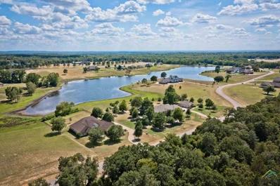 16541 Stallion Shores, Lindale, TX 75771 - #: 10098463