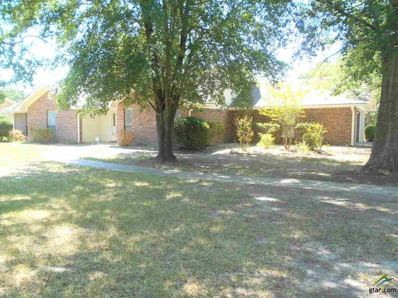 808 Lance Road, Quitman, TX 75783 - #: 10098506