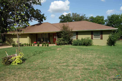 106 Hill Street, Mt Vernon, TX 75457 - #: 10098795