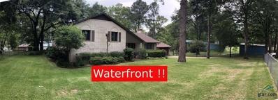 23250 Edgewater Drive, Frankston, TX 75763 - #: 10098868