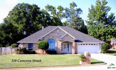 310 Cameron St, Whitehouse, TX 75791 - #: 10099335