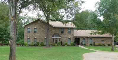 19517 Oakmeadow Circle, Tyler, TX 75703 - #: 10099381