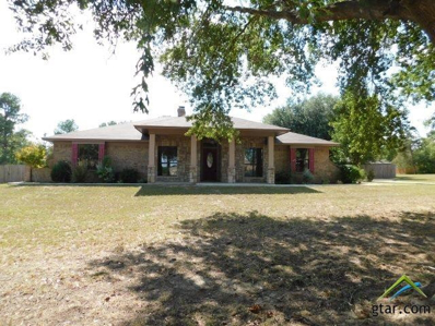 192 Cr 4160, Pittsburg, TX 75686 - #: 10099477
