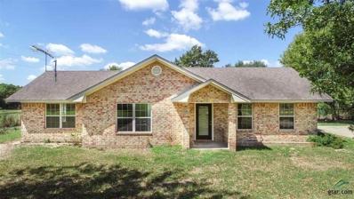 1012 Cr 4260, Cookville, TX 75558 - #: 10099510