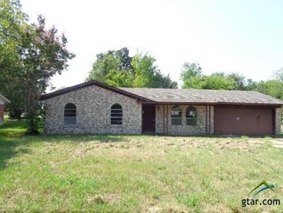 424 Sprite Drive, Sulphur Springs, TX 75482 - #: 10099551